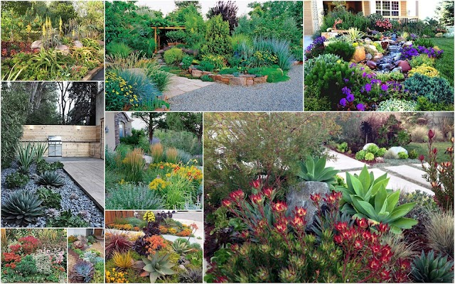 Κήποι μειωμένης φροντίδας για εξοχικά σπίτια