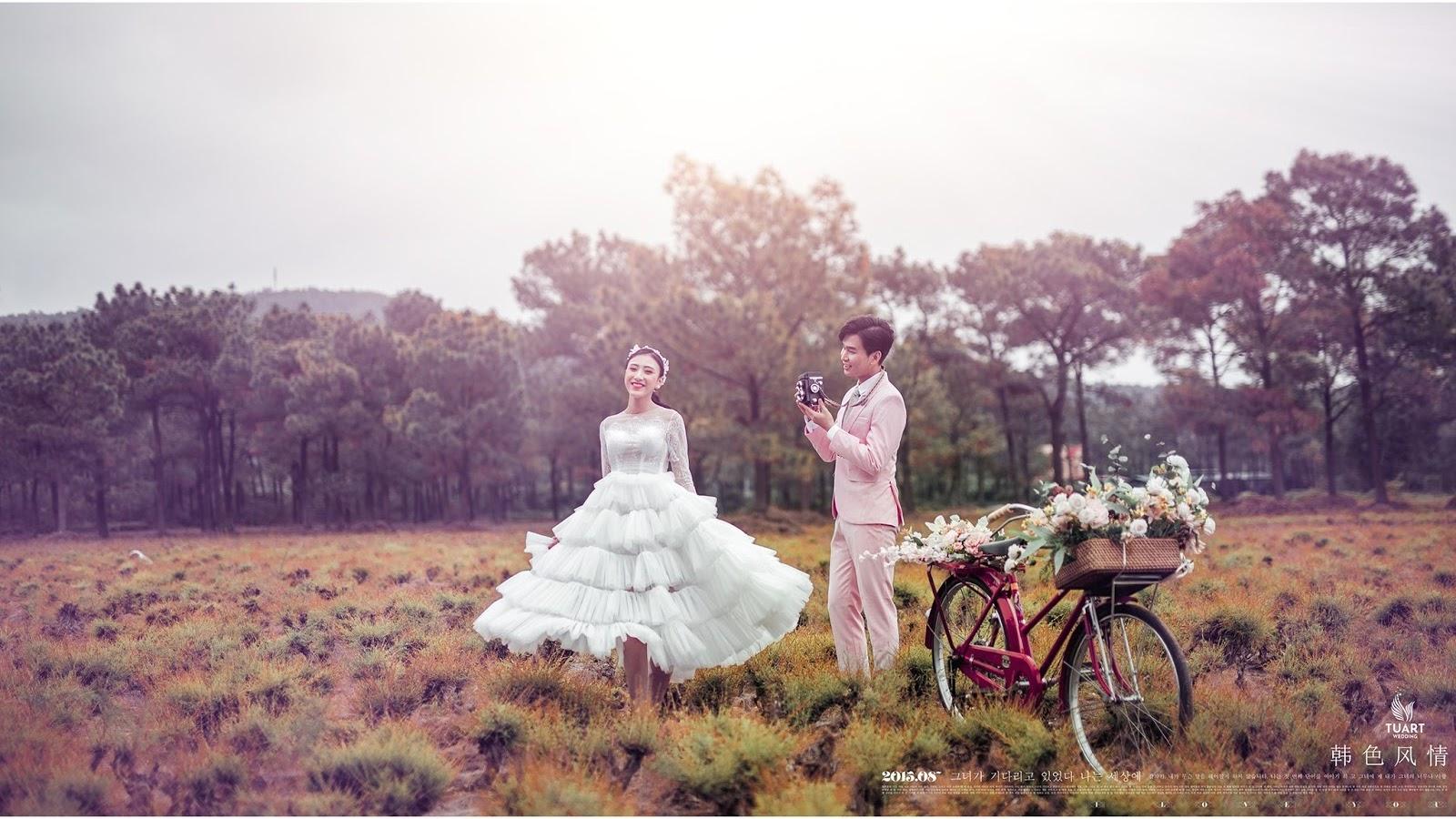 Album ảnh cưới 4