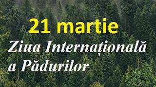 21 martie: Ziua Internațională a Pădurilor