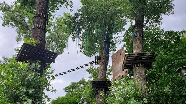 Park Linowy Tarzan Leszno