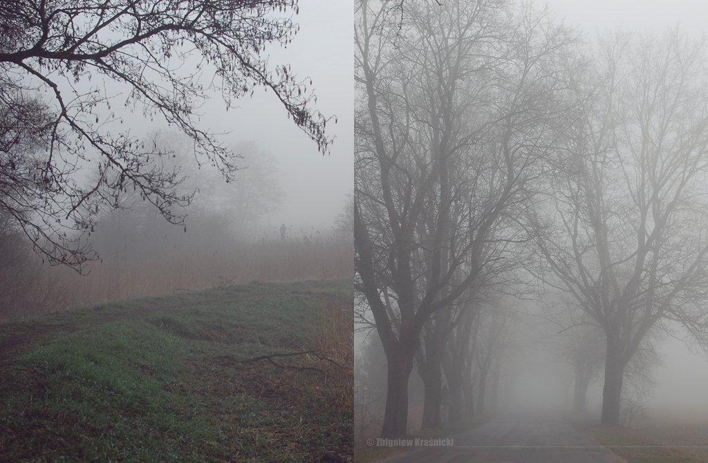 Olsztyn, mgła, osiedle Brzeziny