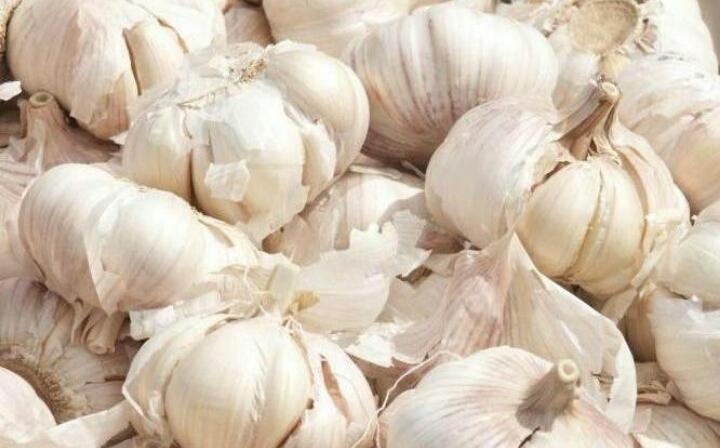 Bahan Makanan Yang Bisa Membuat Tubuh Menjadi Bau