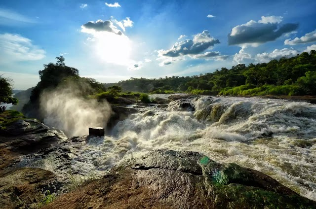 Uganda's Murchison Falls National Park: The Complete Guide