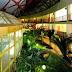 Новорічні свята у санаторії «Хвиля»: відпочивайте з користю для здоров'я та гаманця!