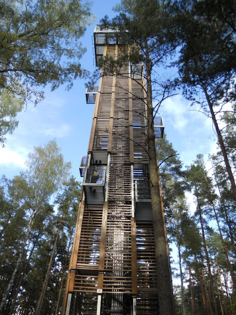 Things to do near Riga: Observation tower in Dzintari Forest Park