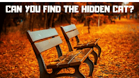 Picture Puzzles in which your challenge is find the hidden animals.