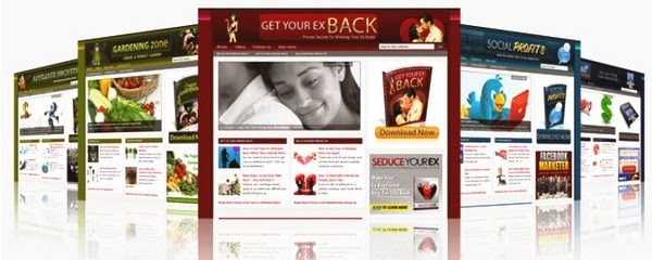 Plr wordpress blog layout and content packs