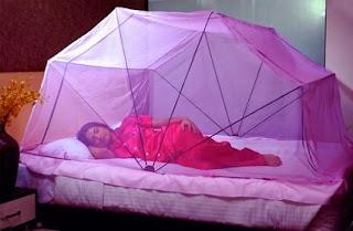 Mosquito Net Chennai