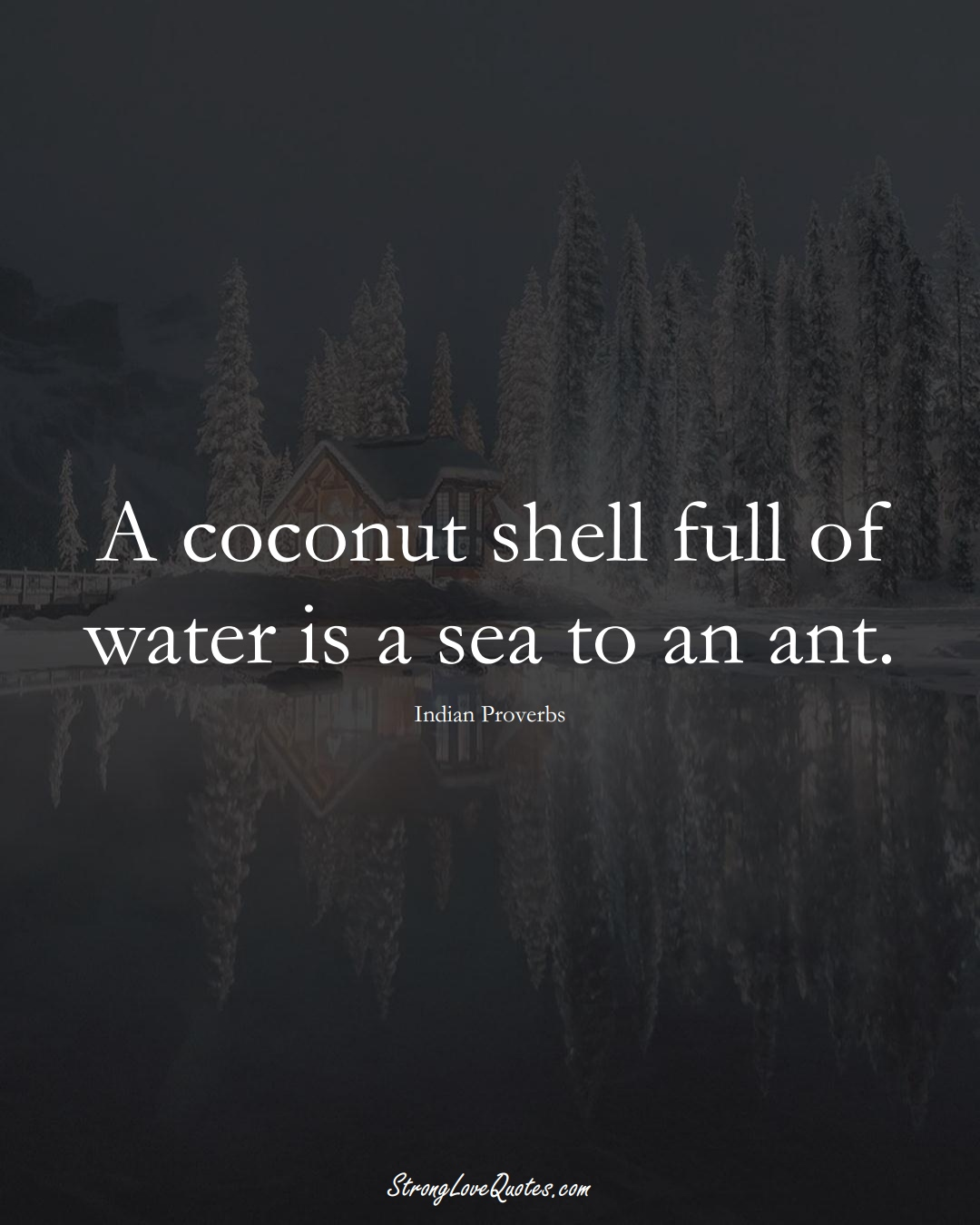 A coconut shell full of water is a sea to an ant. (Indian Sayings);  #AsianSayings