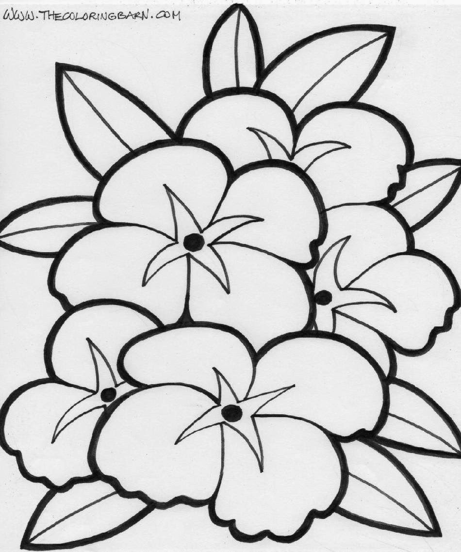 coloring pages of flowers for kids printable color pages flowers