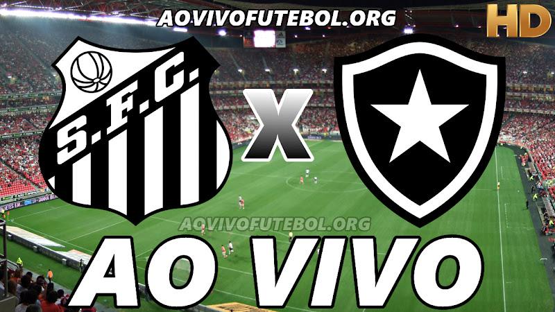 Santos x Botafogo Ao Vivo Hoje em HD
