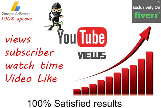 I will embed your youtube video in websites best SEO video rank