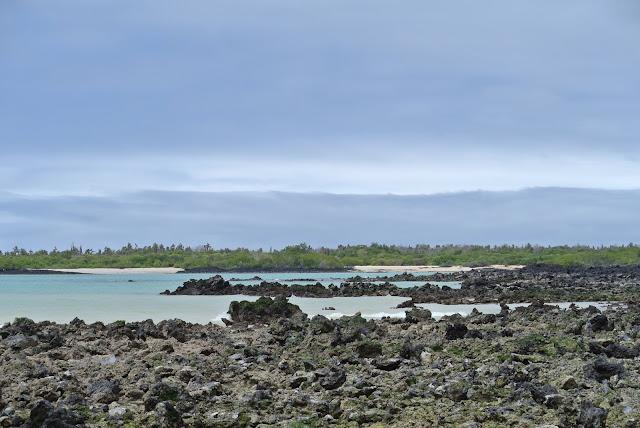 Viaggio alla Galapagos