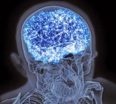 mitos otak manusia memiliki jumlah neuron hingga 100 milyar