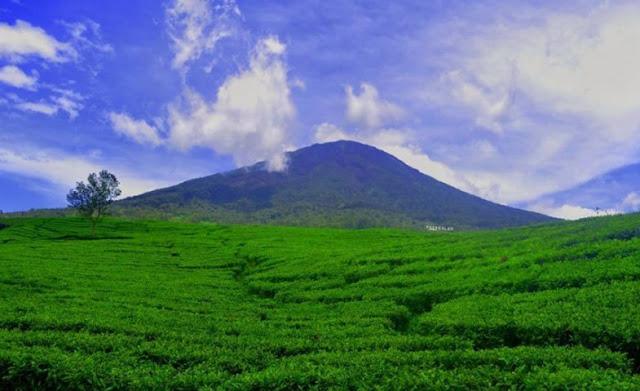 Pendakian, Gunung Dempo, Sumatra
