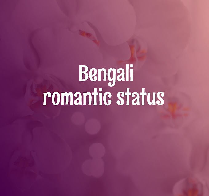 Bengali Romantic Status | share romantic status in bengali on whatsapp