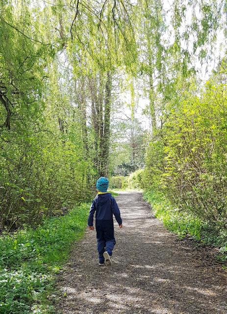 Küsten-Spaziergänge rund um Kiel, Teil 6: Der Rundweg um den Langsee. Die Strecke ist für Kinder gut bewältigbar, ebenso mit einem Kinderwagen oder Buggy.