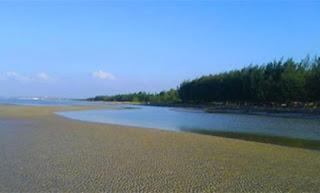 Pantai Cemara Tuban Jawa Timur