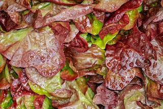 desinfectar lechuga embarazo con que se puede desinfectar la verdura higienizacion de frutas y verduras he comido fruta sin lavar embarazada