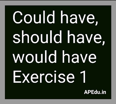 Could have, should have, would have Exercise 1