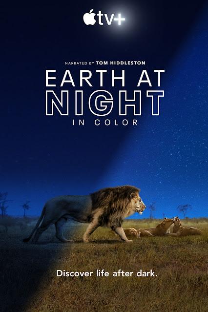 Cartel Planeta nocturno: a todo color