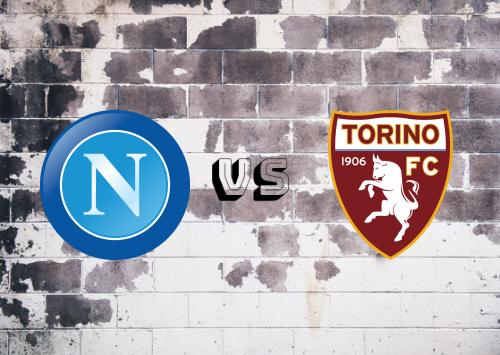 Napoli vs Torino  Resumen