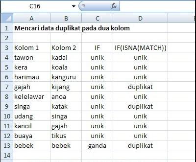 Mencari Data Ganda Pada Kolom yang Berbeda di Excel 2007