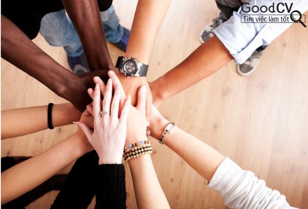 Bật mí cách Teamwork mang đến hiệu quả tích cực nhất