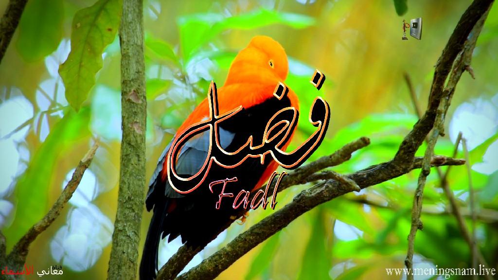 معنى اسم فضل وصفات حامل هذا الاسم Fadl