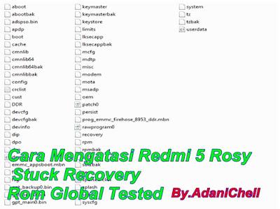 Cara Mengatasi Redmi 5 Rosy Stuck Recovery Rom Global Tested