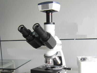 kính hiển vi 3 mắt ( có camera) , 86. 041, (Euromex – Hà Lan)