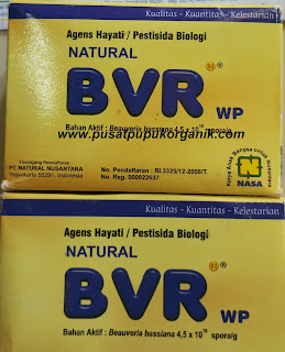 harga-natural-bvr-nasa