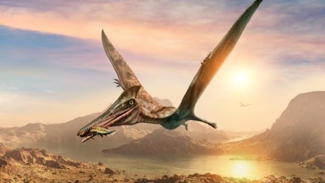 Ανακαλύφθηκε στην έρημο της Χιλής απολίθωμα δεινοσαύρου «ιπτάμενος δράκος»