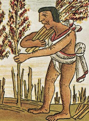 Amaranto Huautli época prehispánica
