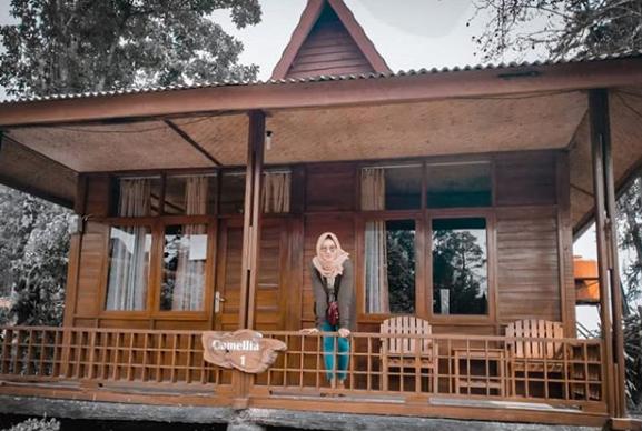 rumah-kayu-kelapa-malabar