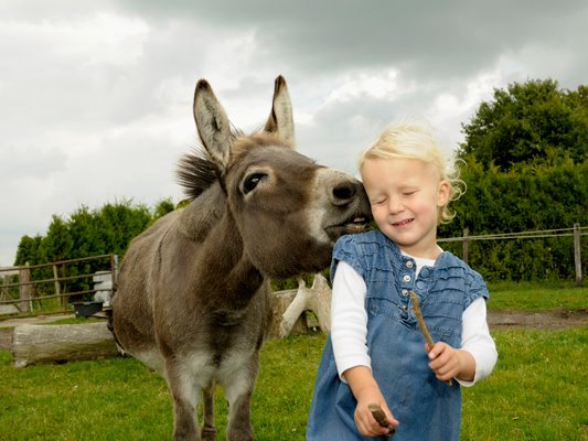 Interesting Pictures Funny: Kids Vs Animals - Unbound State