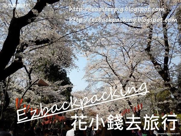 名古屋+中部北陸櫻花情報2020
