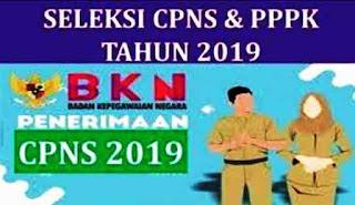 Pendaftaran CPNS dan PPPK Dibuka Oktober? Ini Kata BKN