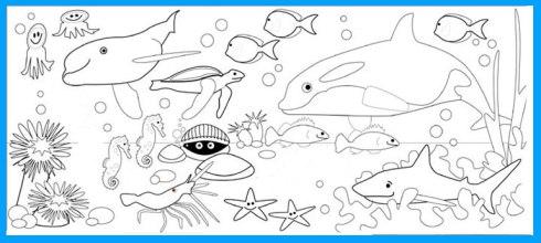 Sketsa Mewarnai Gambar Bawah Laut Dunia Putra Putri