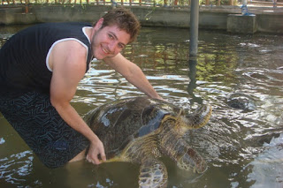 Turtle Island Water Sports Bali Tours Packages