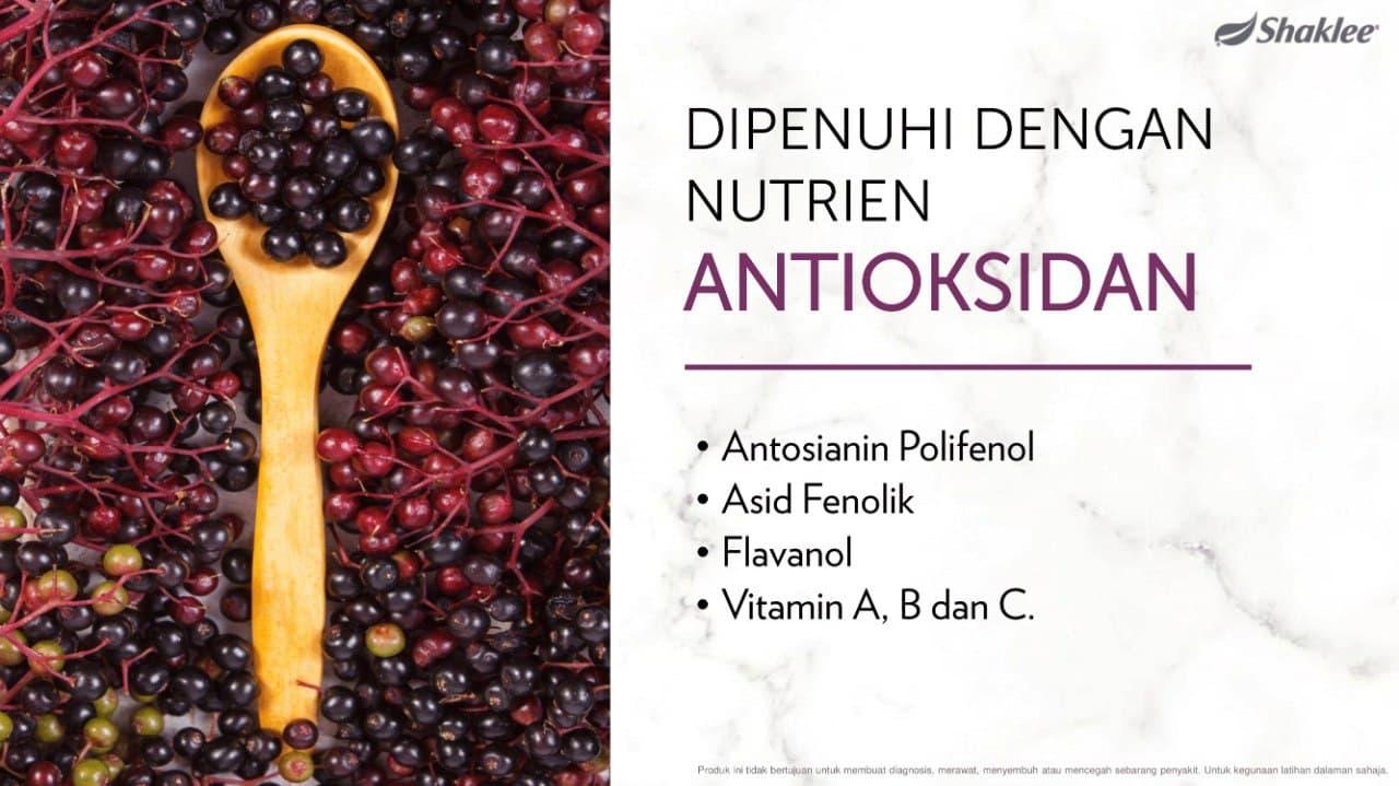 Elderberry tinggi antioksidan