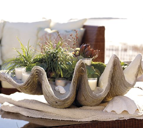 Decorating On The Half Shell Clamshells In Home Decor