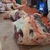 É moralmente correto matar animais por comida?