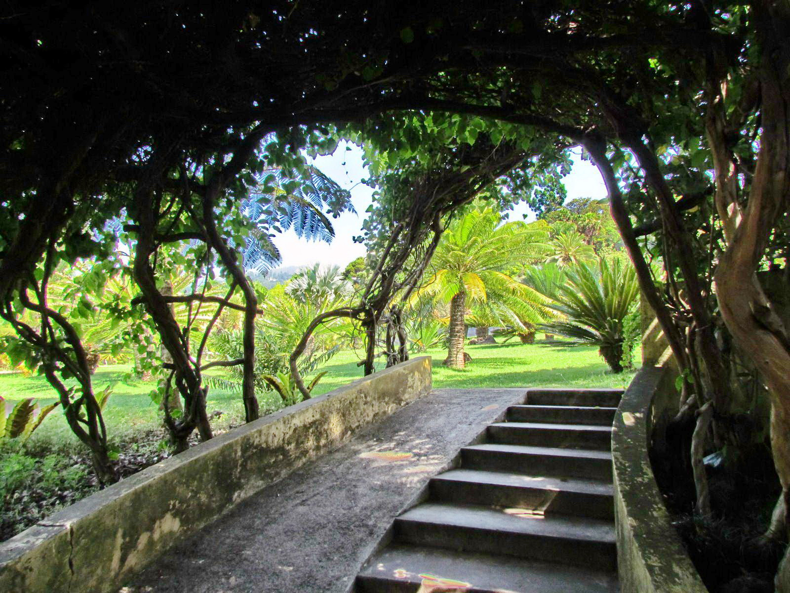 corners in botanic garden