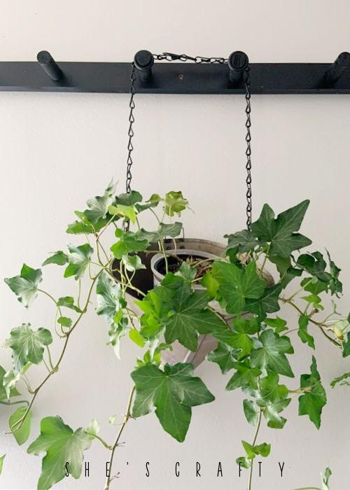 Plant Holder made from vintage metal funnel.