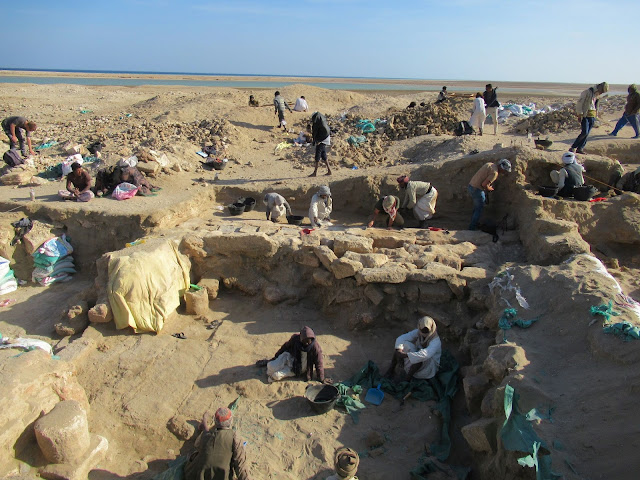 Influences from Asia and the African interior found at ancient Red Sea temple in Egypt