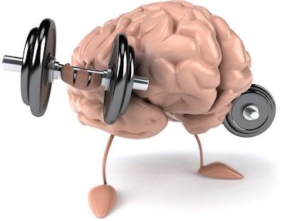 9 Makanan yang Membuat Otak Kamu Makin Cerdas