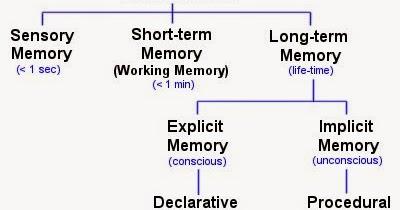 Memory Concept Map.Mr Cantor S Ap Psychology Blog Unit 7 Memory