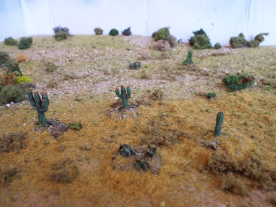 MAW99 Cacti picture 1