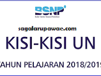 Kisi-kisi Ujian Nasional SMALB 2018/2019 Resmi BSNP lengkap Semua Mata Pelajaran